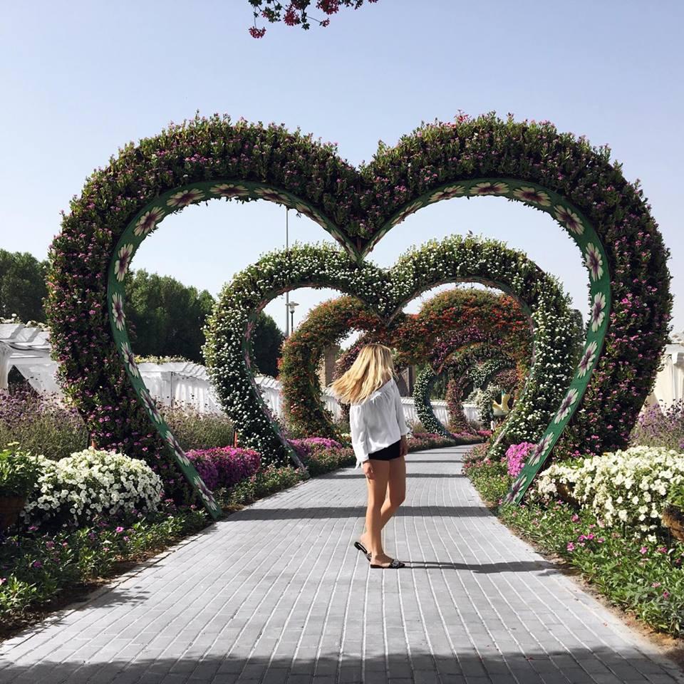 Dubai Reisetipps Miracle Garden Reisetipps Travelguide Sehenswürdigkeiten Blumen Katefully Bloggerin